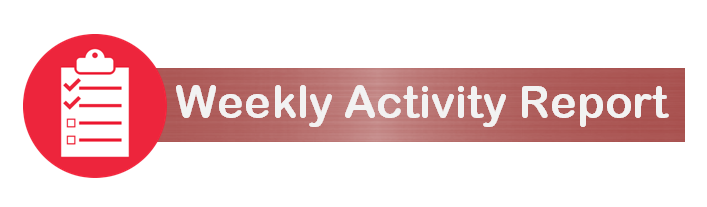 Weekly Activity Report (PNG, 46 KB)