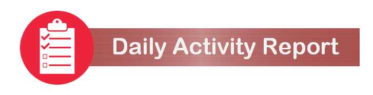 Daily Activity Report (PNG, 46 KB)