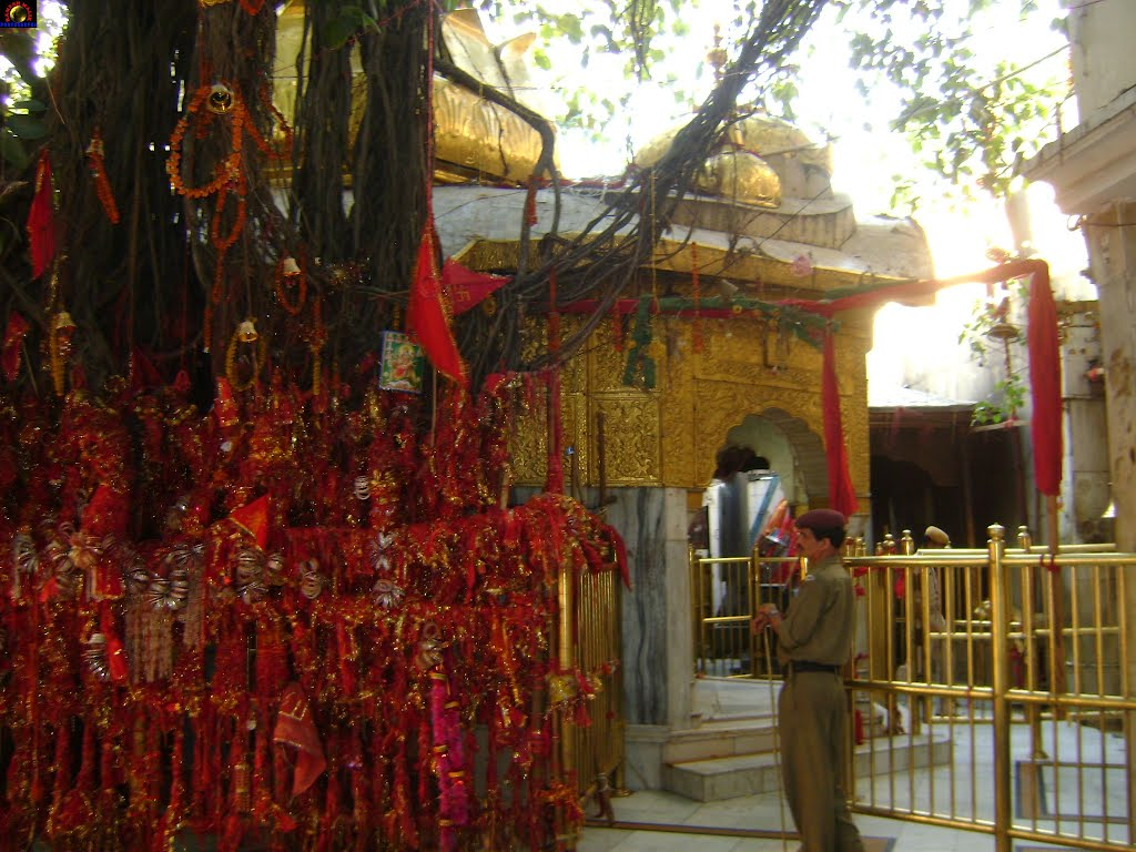 Chintpurni Mata Temple